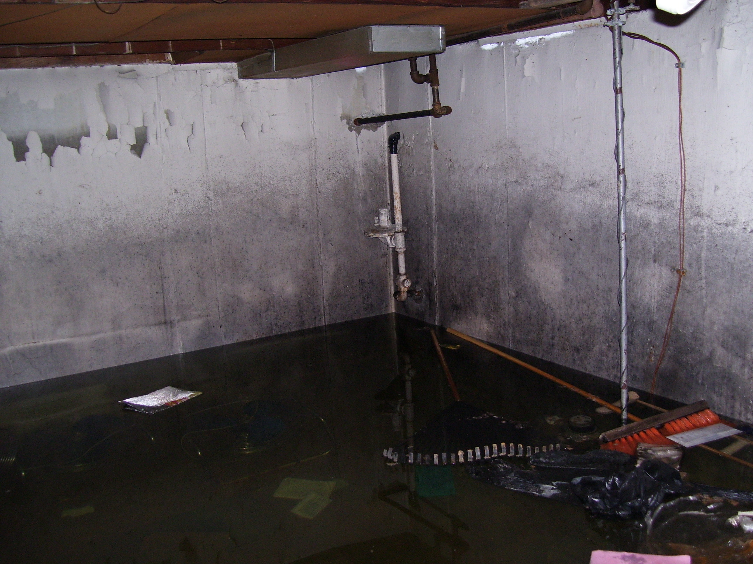 Flooded Basement In Warren MI. From A Sewer Backup