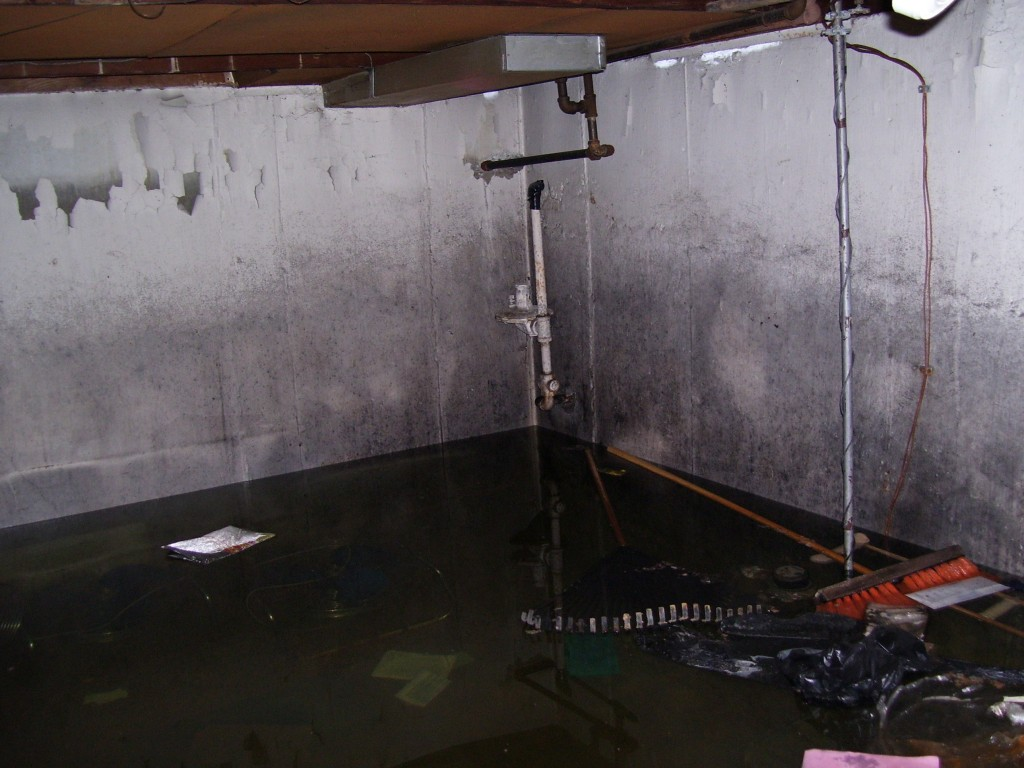 flooded basements from a sump pump backup in east pointe mi