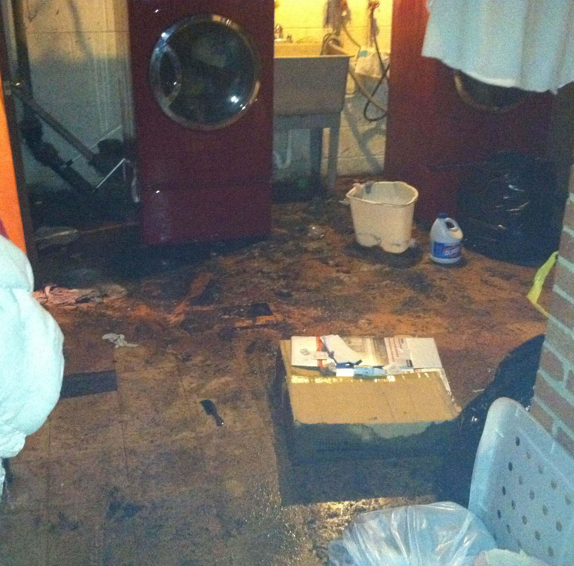 discovering your basement has just flooded from a sewer backup can be
