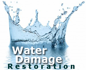 Water Damage Restoration Flood Water Removal Shelby Twp. MI