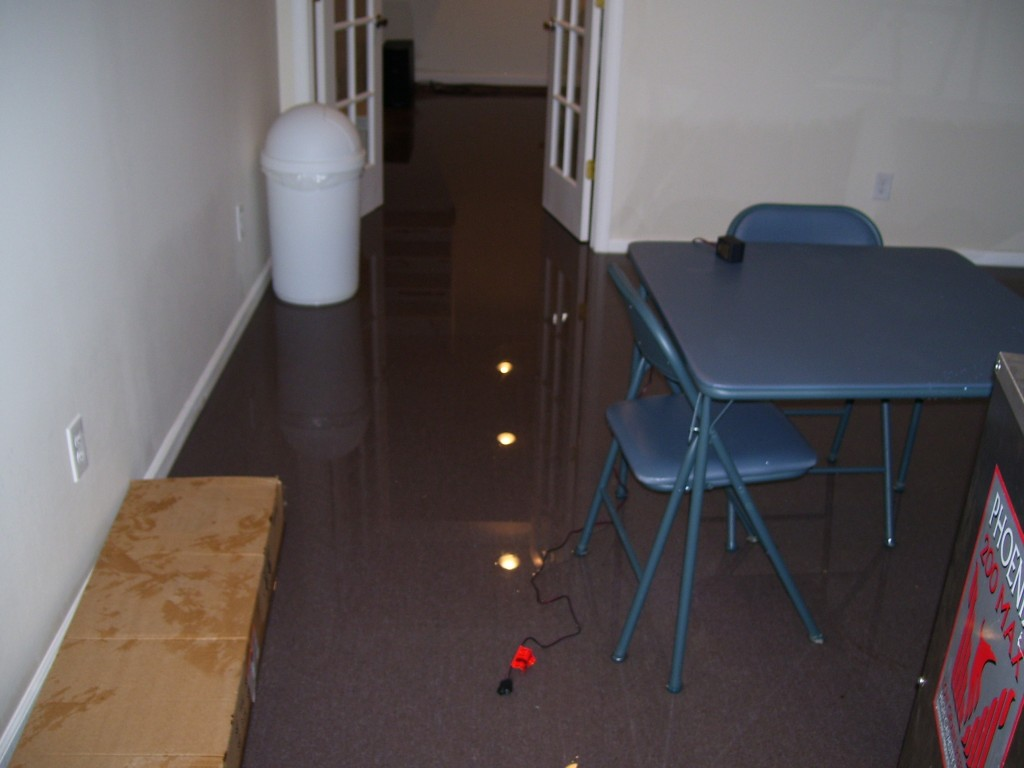 Flooded Basement Restoration and Cleaning in Royal Oak MI from a sump pump backup