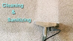 Cleaning-And-Sanitizing-After-A-Sewer-Backup-In-Southeast-MI