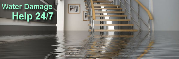 Macomb Flooded Basement Cleanup